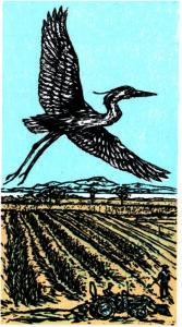 Blue Heron Farm VT logo